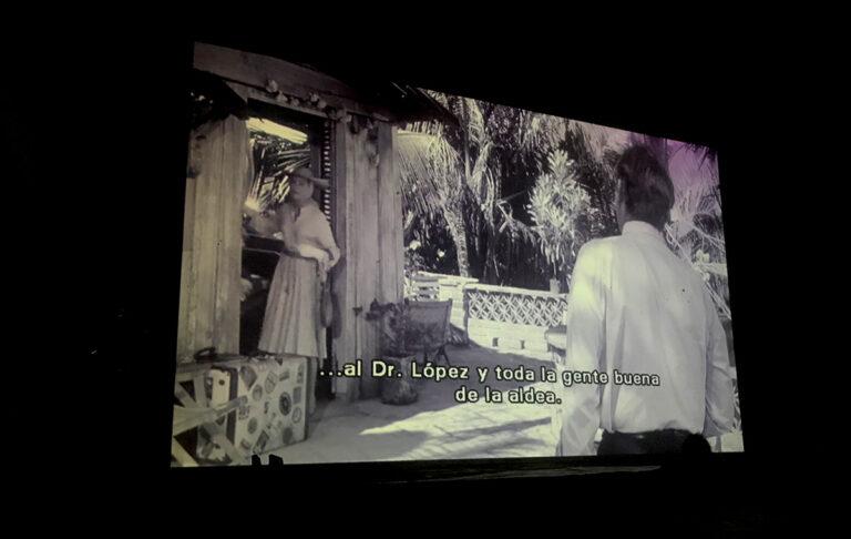 Cinema Nights1